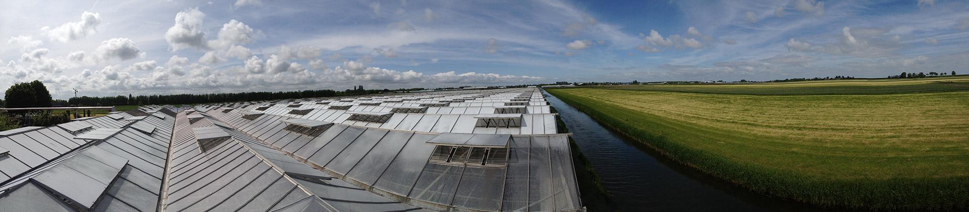 Seedcare Nederland