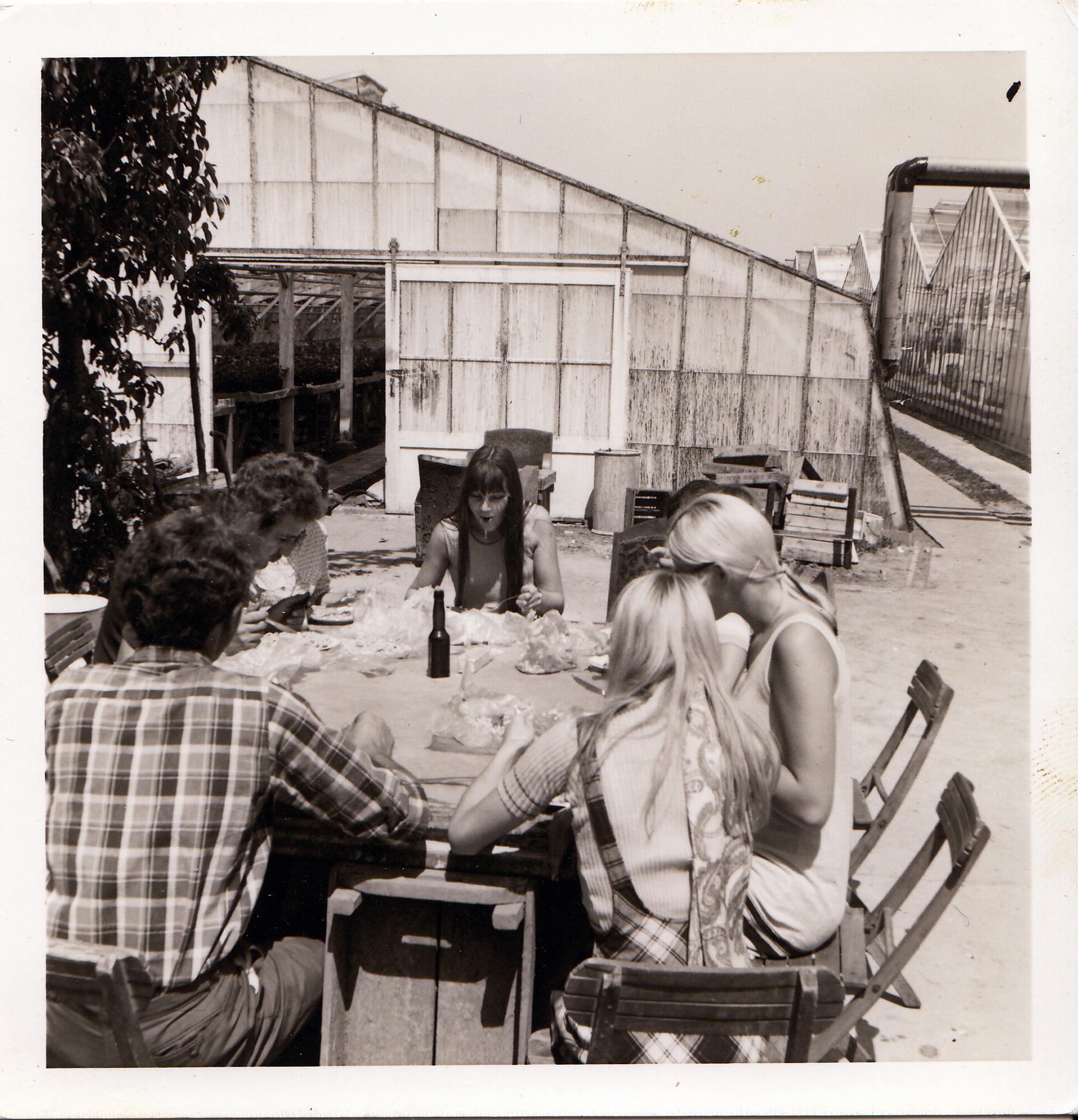 seedcare history